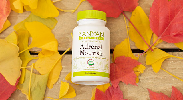 Adrenal Nourish™ for an Active Life