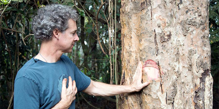 Kevin Casey with arjuna tree