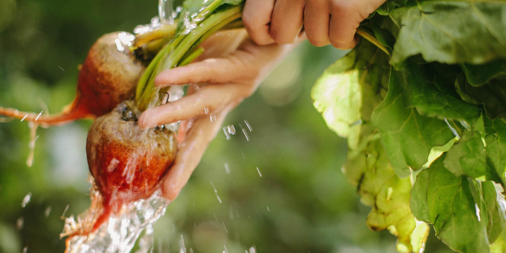 Washing beets