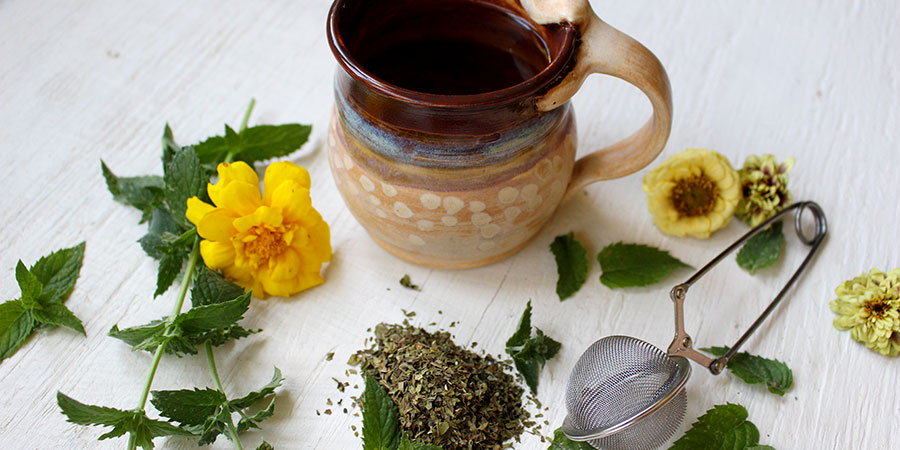 mint tea and ingredients