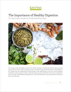The Importance of Healthy Digestion PDF