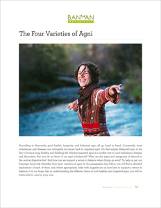 The Four Varieties of Agni PDF