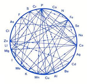 Mineral wheel
