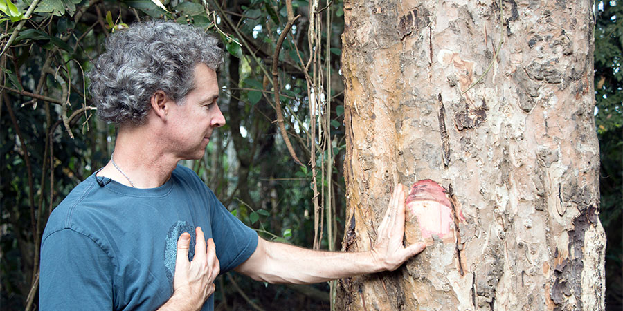 Banyan co-founder, Kevin, and an arjuna tree