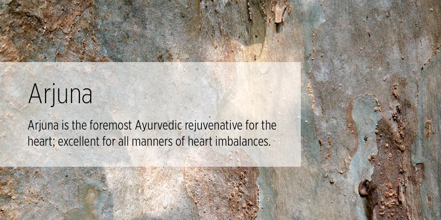 arjuna benefits