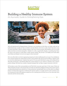 Immune System PDF