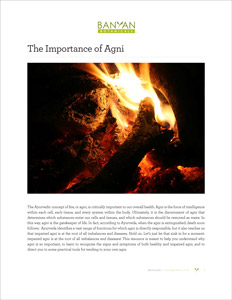 The Importance of Agni PDF