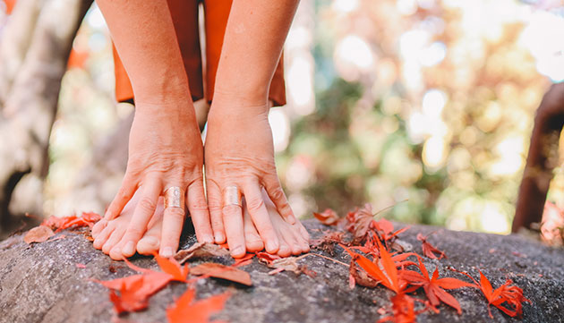 An Ayurvedic Guide to Joint Health