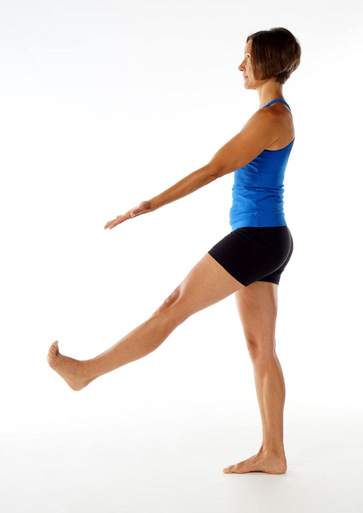Standing Extended Leg Pose 2