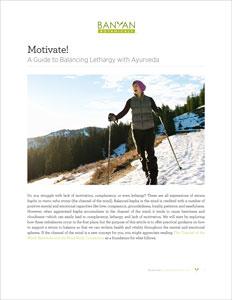 The Motivate! PDF