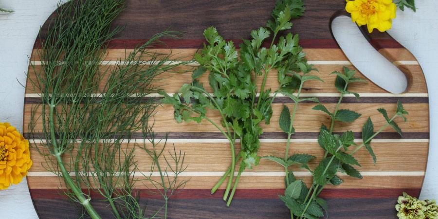 fennel, cilantro, mint