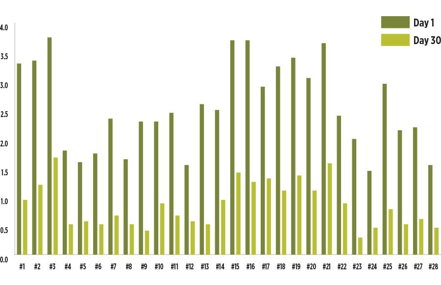 Figure 11 Graph