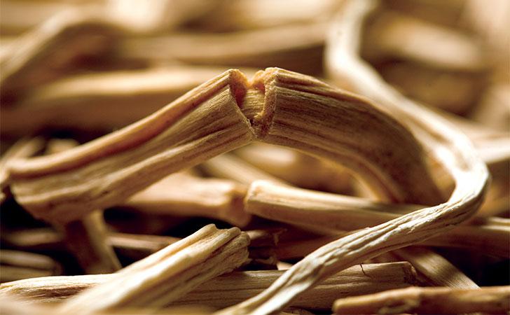 dried shatavari root