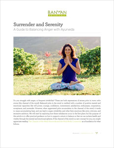 The Surrender and Serenity PDF