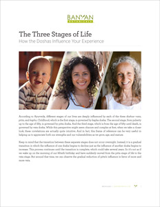 The Three Stages of Life PDF