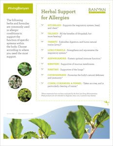 Herbal Support for Allergies Tip Sheet