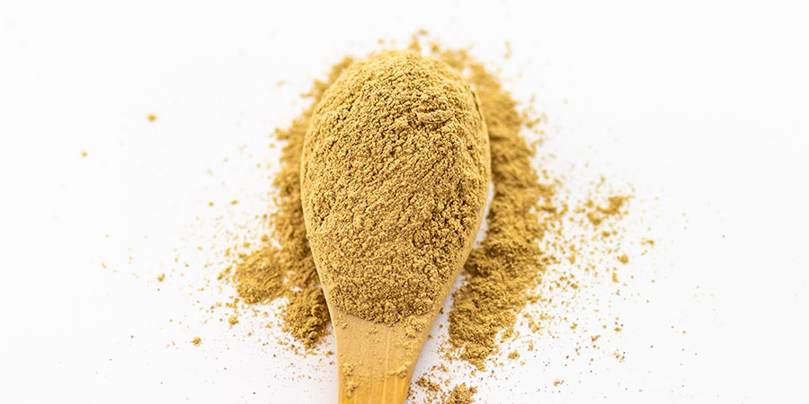 Loose triphala powder on a spoon, ready to be used in a variety of ways