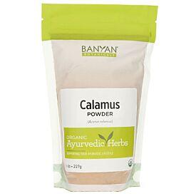 Calamus powder