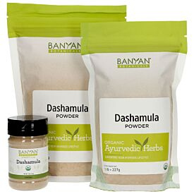 Dashamula powder