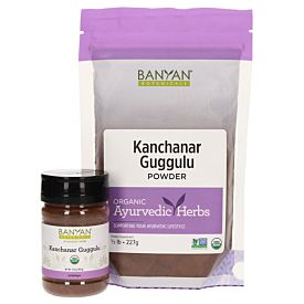 Kanchanar Guggulu powder