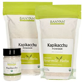 Kapikacchu powder