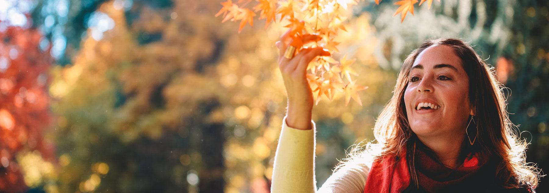 Fall Rejuvenation Guide