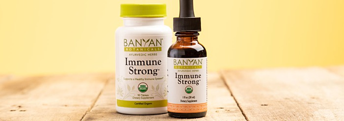 Immune Strong™—A New Herbal Blend for Year-Round Health