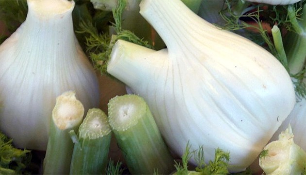 Roasted Fennel with Cucumber Mint Sauce Recipe