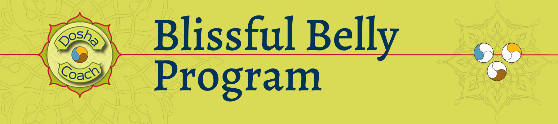 Blissful Belly Program